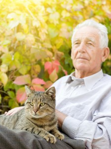 Should My Aging Parent Adopt a Shelter Cat?