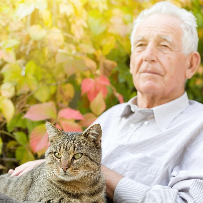 4 Ways Elder Care Can Help Seniors Care for Pets