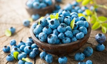 What Can Your Senior Eat to Boost Her Immune System?