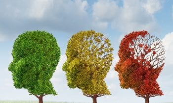 Learn More About Late-Stage Alzheimer's Disease Today